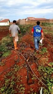 Equipe da Iagro realizando o trabalho de levantamento de dados em horta de Campo Grande