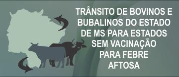 Trântiso bov_bub para Estados sem Vacinação
